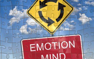 Emotie? Ik denk het niet…